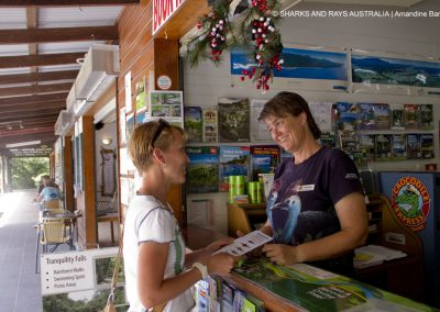 Barbara distributes our flyers in the Daintree Village, encouraging people to submit sawfish sightings to our database.