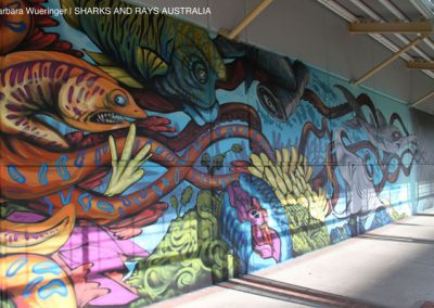 A sawfish on the wall of Cairns Central