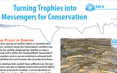 Turning trophies into messengers for conservation